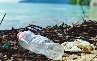 Plastic is the Unexpected Solution to the Plastic Problem in the Ocean